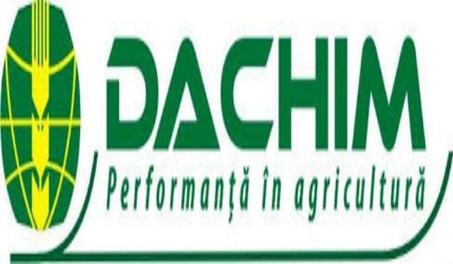 dachim