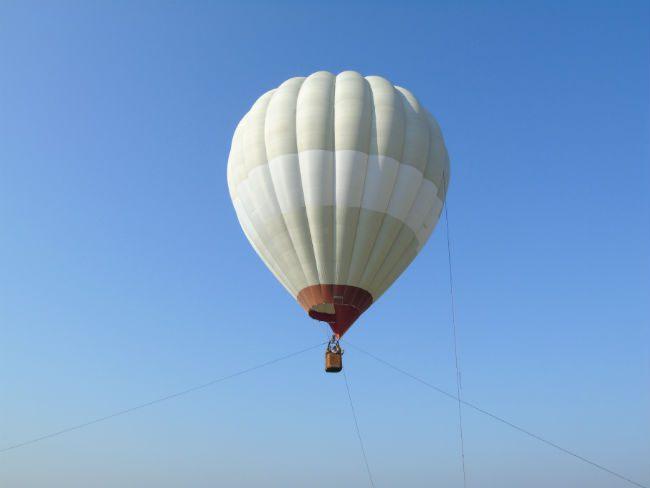 zmt balon