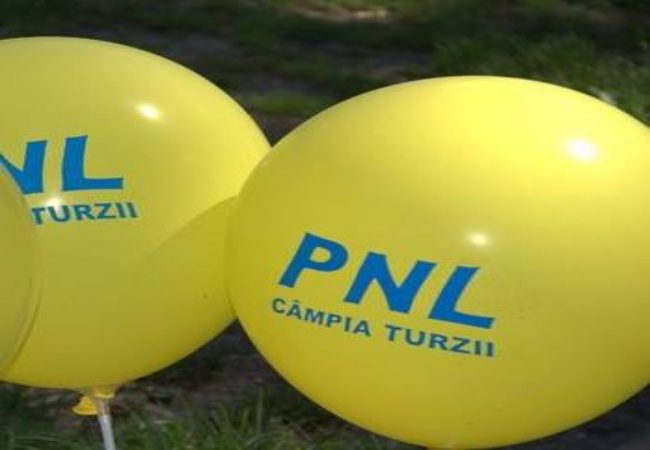 pnl ct 2