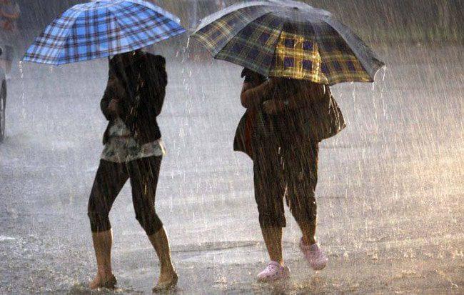 ploi turdanews