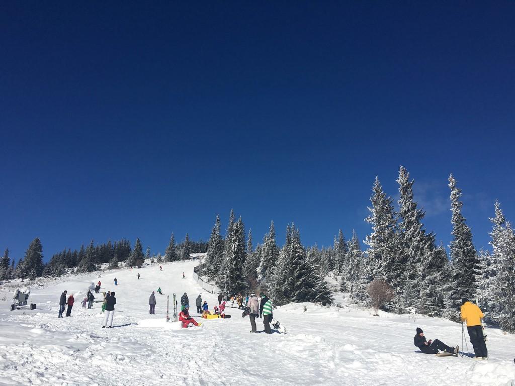 buscat ski summer resort baisoara cluj 7 1