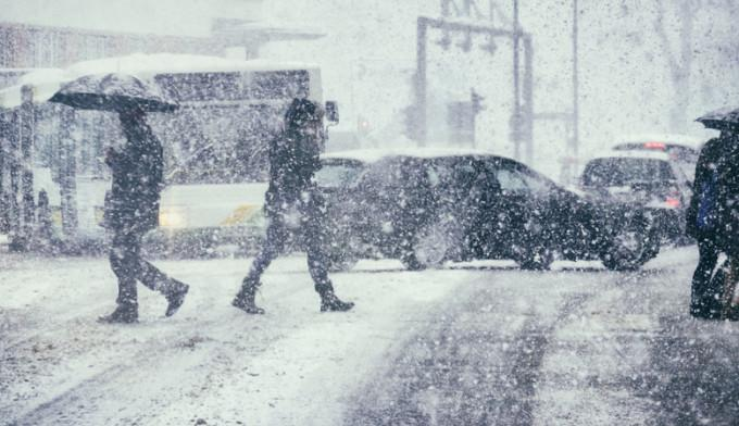 vant ninsoare