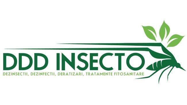ddd insecto