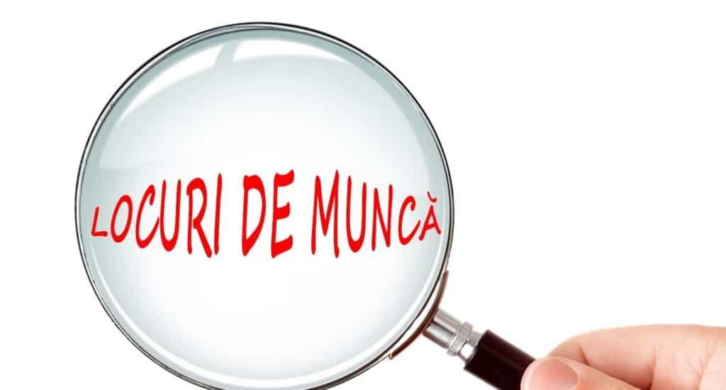 LOCURI DE MUNCA