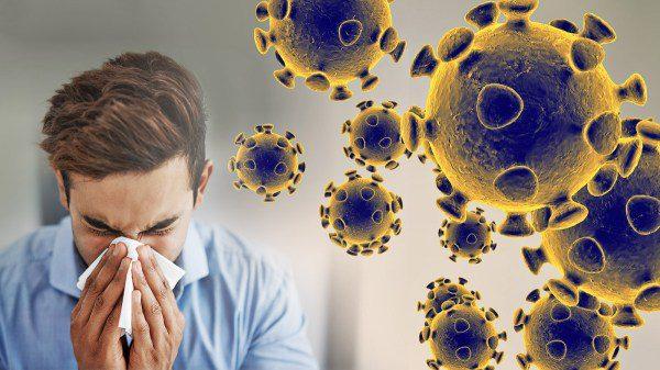 coronavirus graphic web feature